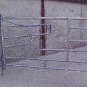 calving_gate_3