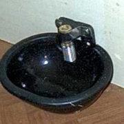 puss_bowl_5