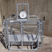 weighing_scales_5